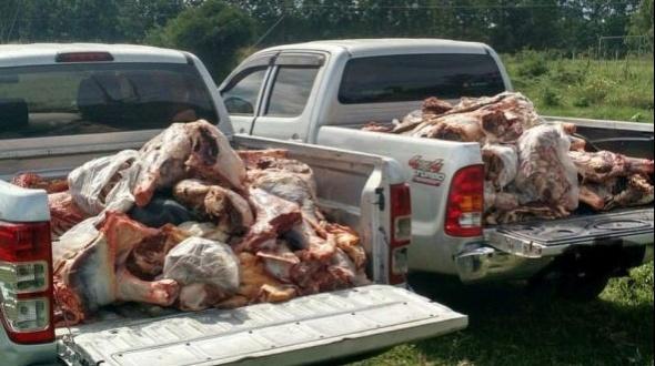 Decomisan más de una tonelada de carne en Juan Pujol y Mocoretá
