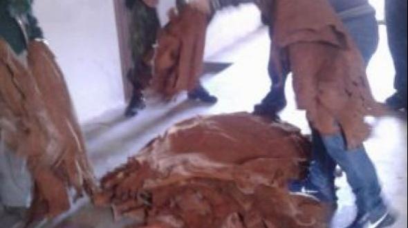 Secuestran más de 1200 cueros en talleres clandestinos