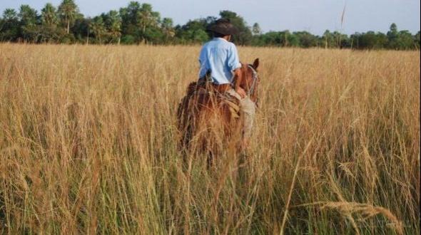 Tras años de conflicto pobladores del Iberá recibirán los títulos de sus tierras