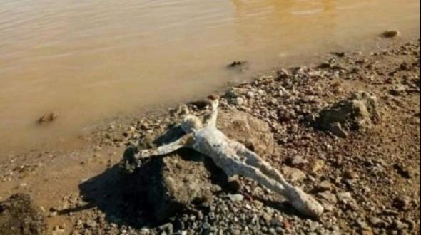 """Por la bajante del Paraná, apareció la imagen del """"Cristo del río"""" en una ciudad entrerriana"""