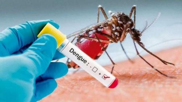 Ante la confirmación de 5 casos de dengue, Salud advierte sobre los cuidados preventivos